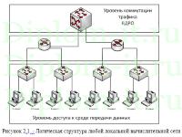 diplom it ru Дипломная работа на тему разработка веб сайта Модернизация корпоративной сети районной больницы диплом по разработке ЛВС